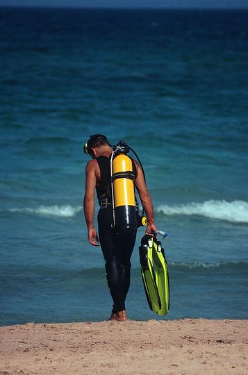 Diver on Beach