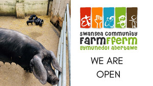 Come and Visit Us!