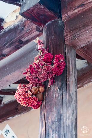 Dried flowers, Korean Folk Village, Seoul, South Korea