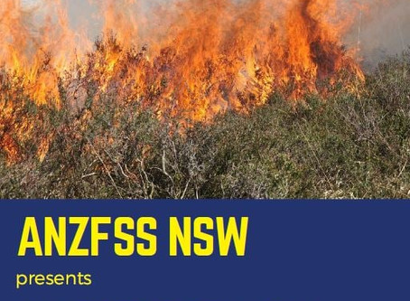 ANZFSS Presentation on Bushfire Investigation