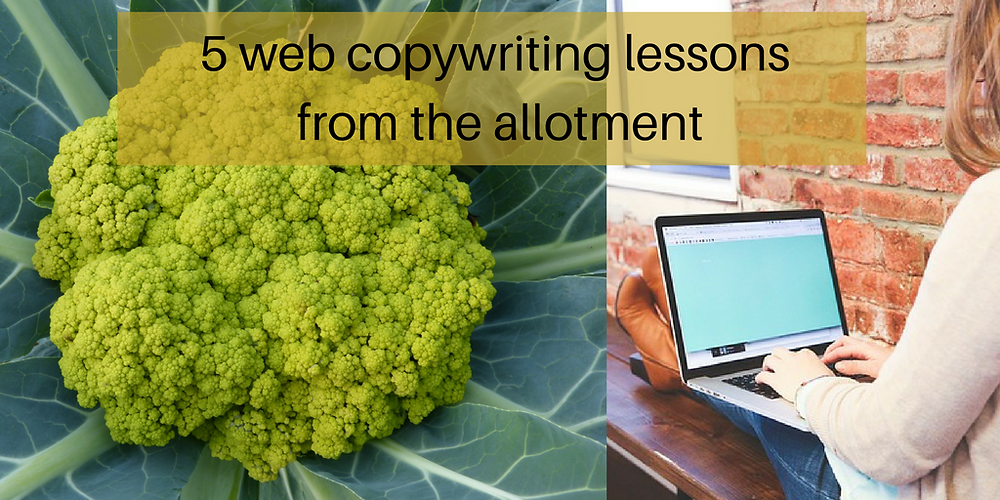 5 web copywriting lessons from the allotment