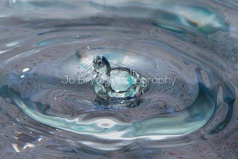 Water Macro Photography Rye NY New York Jo Bryan JoBryan photo photography photos