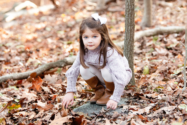 Rye NY New York Jo Bryan fall mini session park leaves nature center girl siblings natural light family photo session JoBryan photo photography
