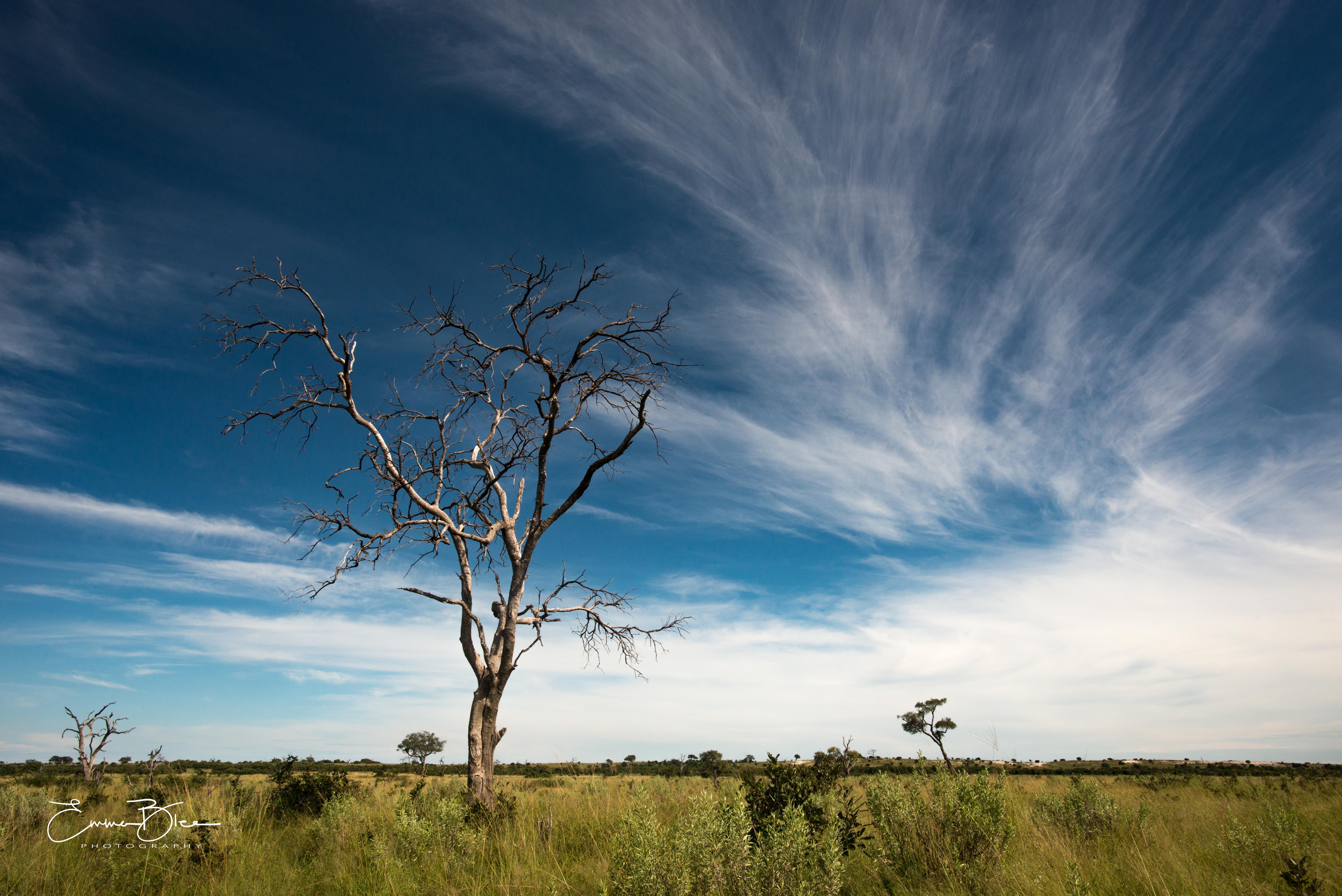 EB_18_04_08_Botswana_0386