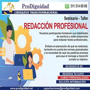 Sem Redaccion Prof.jpg