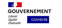 gouvernement covid 19.jpg