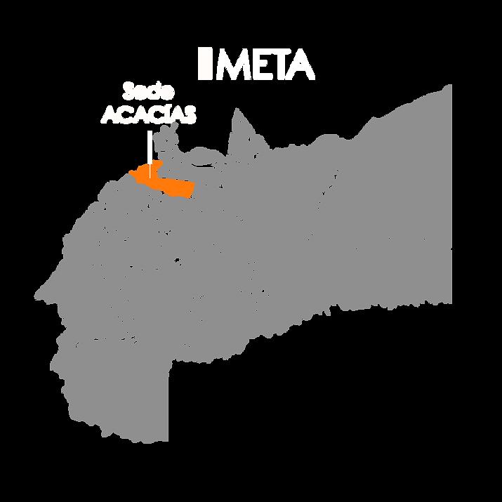 META MAP.png