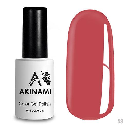 Akinami Color Gel Polish 038