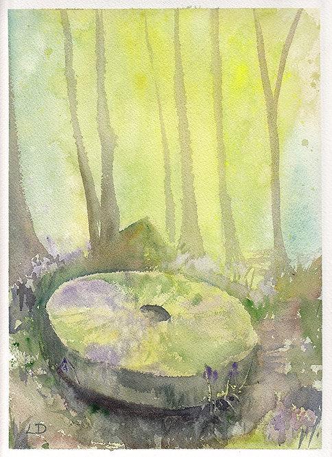 Panorama Woods Millstone - Laura Dawes