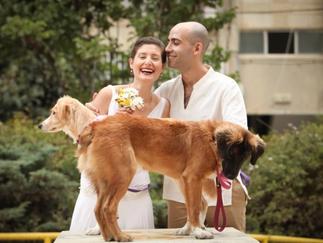 חתונת טבע חברתית  Eco friendly Wedding