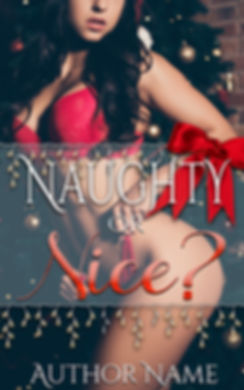Naughty or Nice Ebook premade.jpg