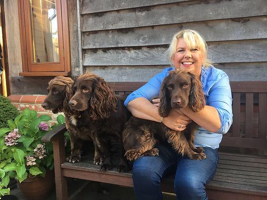 Three Working Cockers @ HappyHoundsMatfield