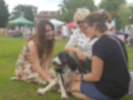 Matfield Fete 2019 Dog Show