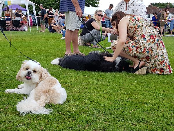 Matfield Fete Dog Show