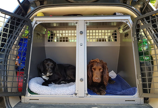 Happy Hounds Matfield Dog Crate