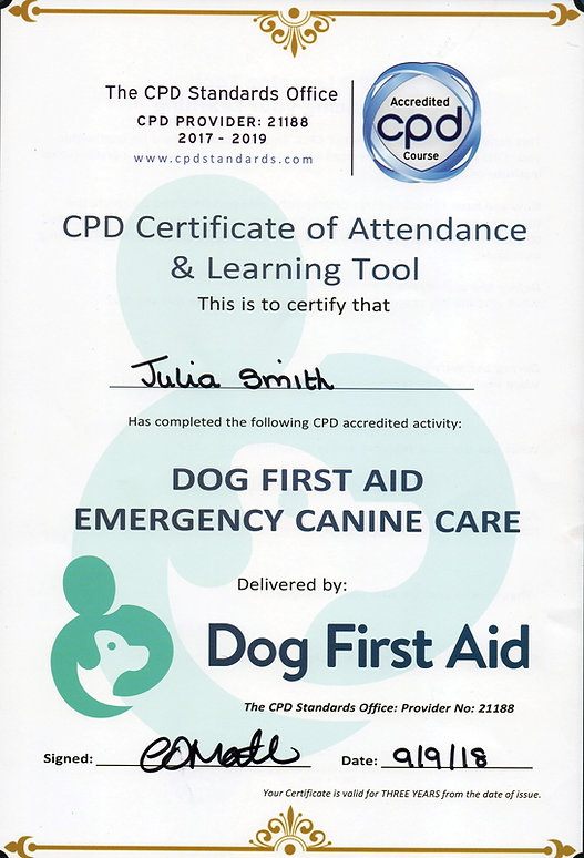 Julia Smith-First Aid Certifcate 2018
