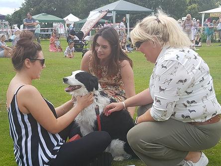 Matfield Fete 2019 Dog Show