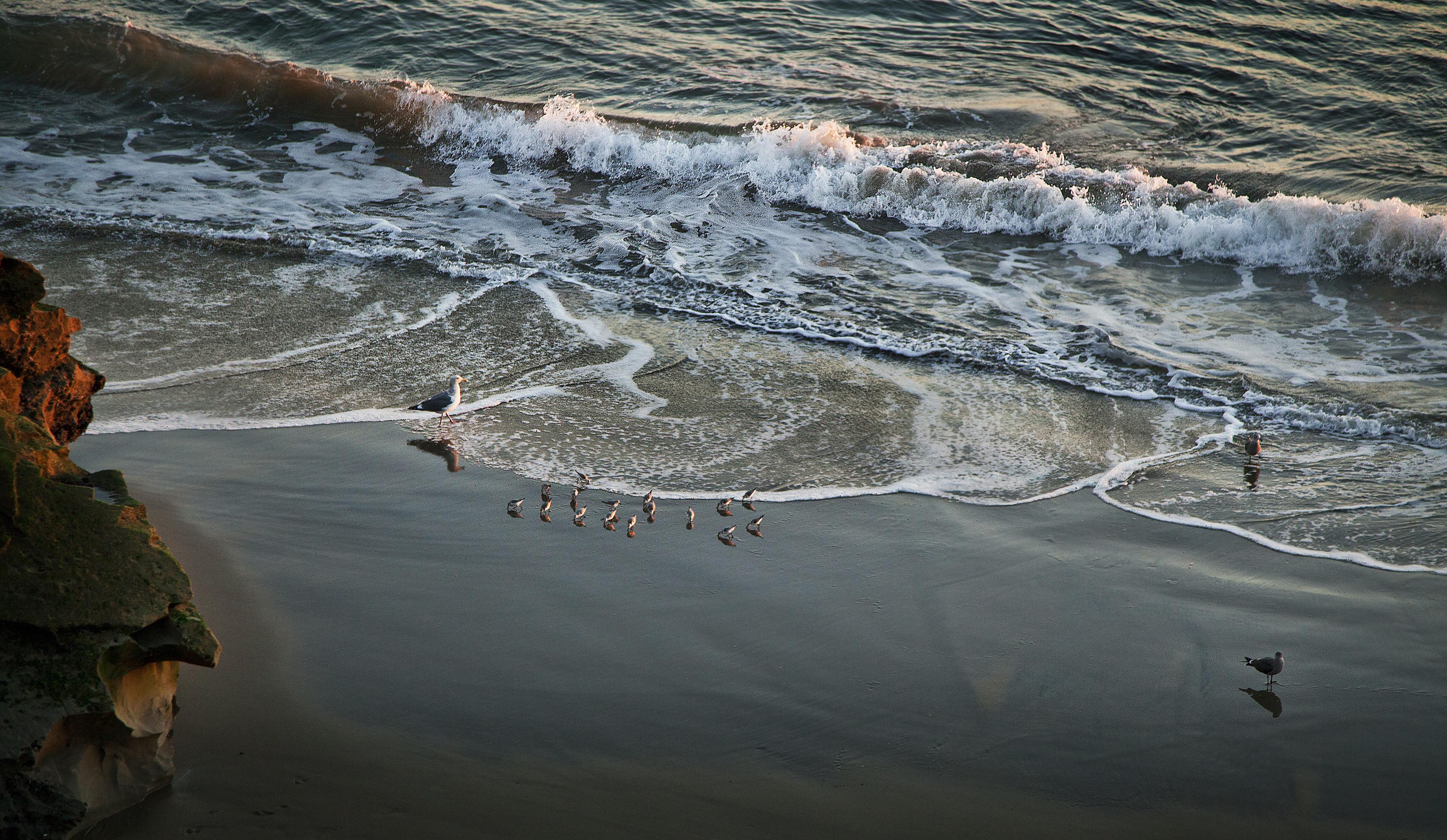 Seafaring Family Web
