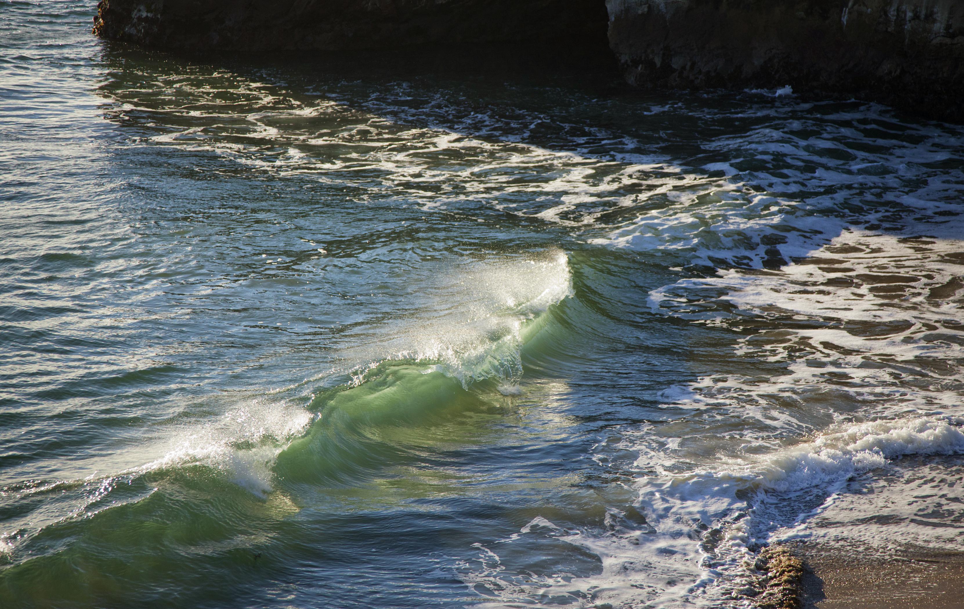 Little Wave Web