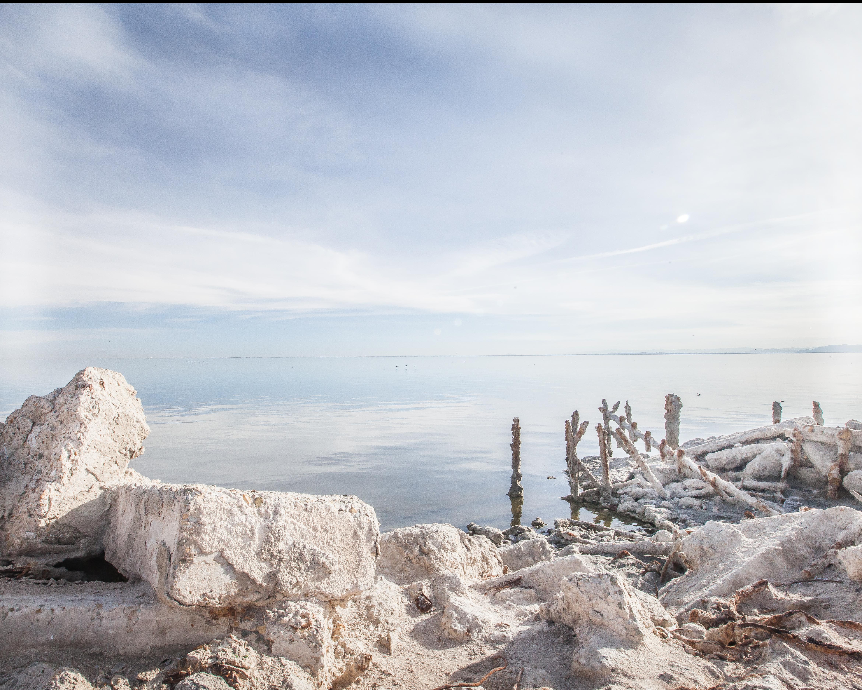 Salton Sea 01