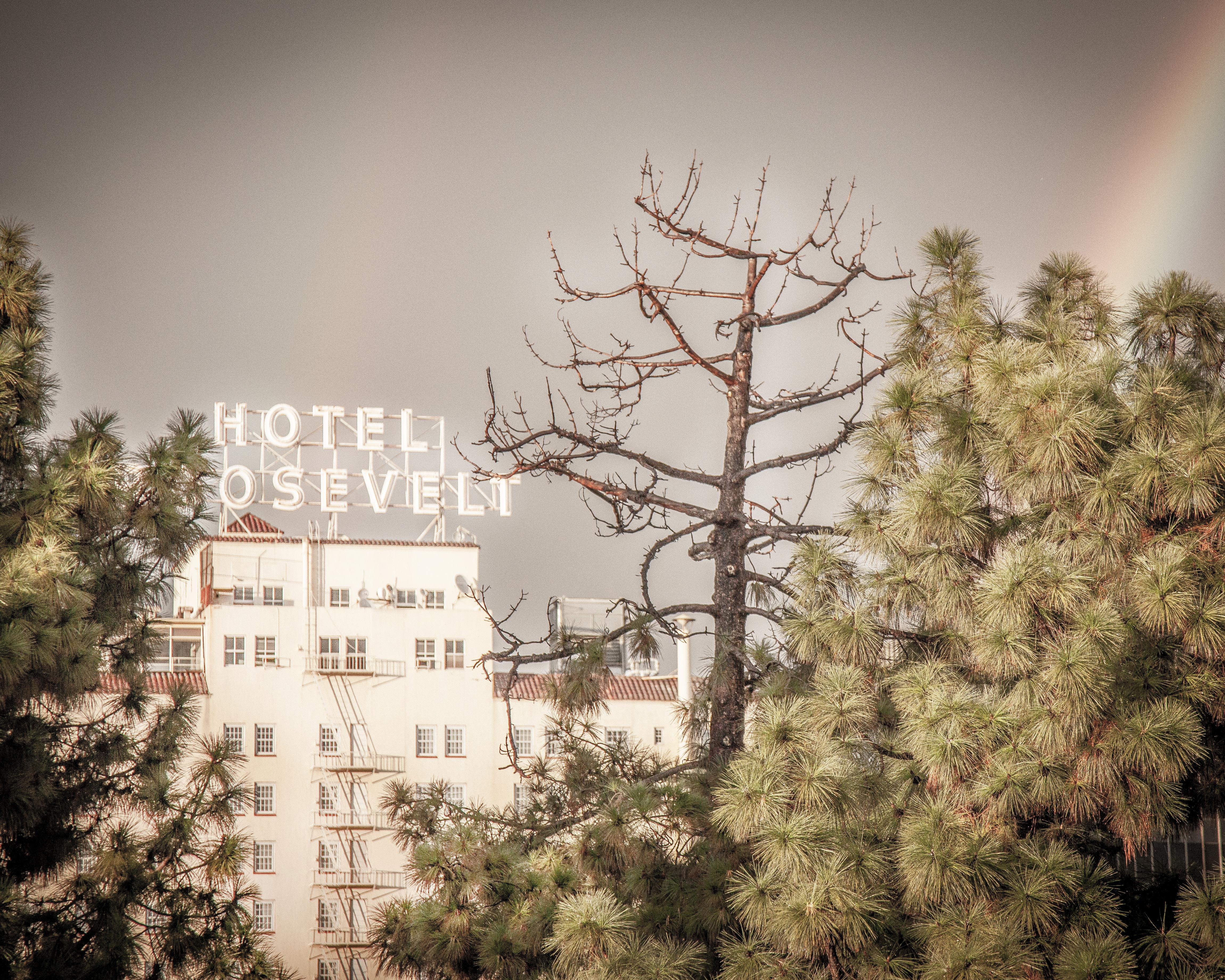 Hotel Osevelt