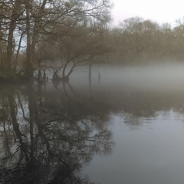 Foggy morning on the Waccamaw