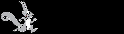 snb logo horizontal (1).png