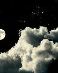 Månbelyst natt