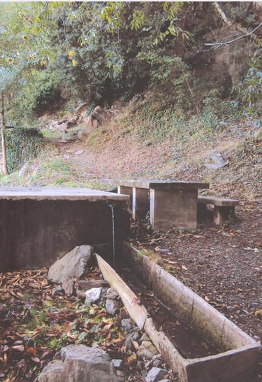 Font del Bosc