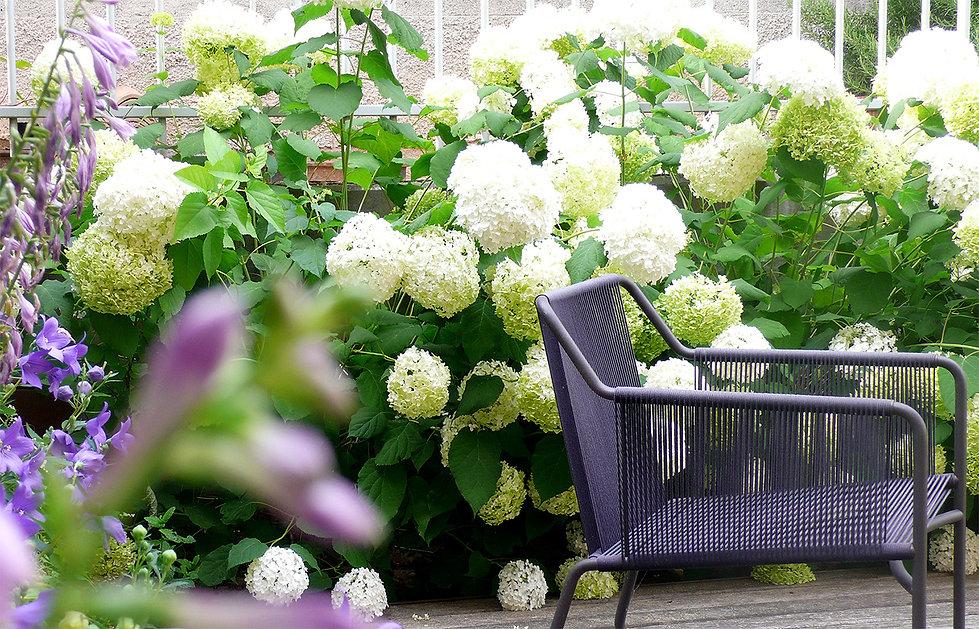 bordura di fondo e seduta giardino privato