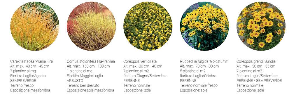 06_paesaggio giallo_abaco.jpg