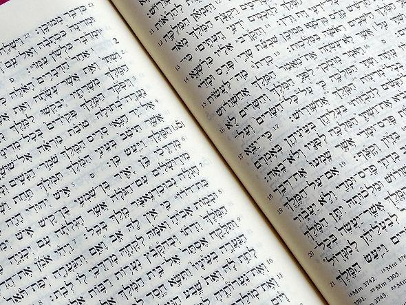 The Hebrew Bible.jpeg