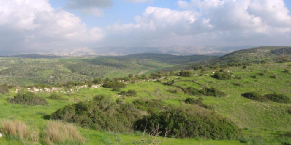 Geoghraphy of the Land - The Shephelah