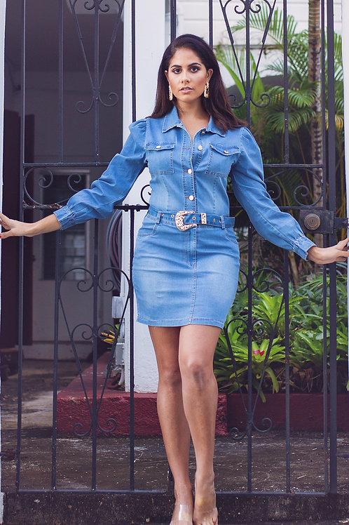 Entrepreneur Denim Dress