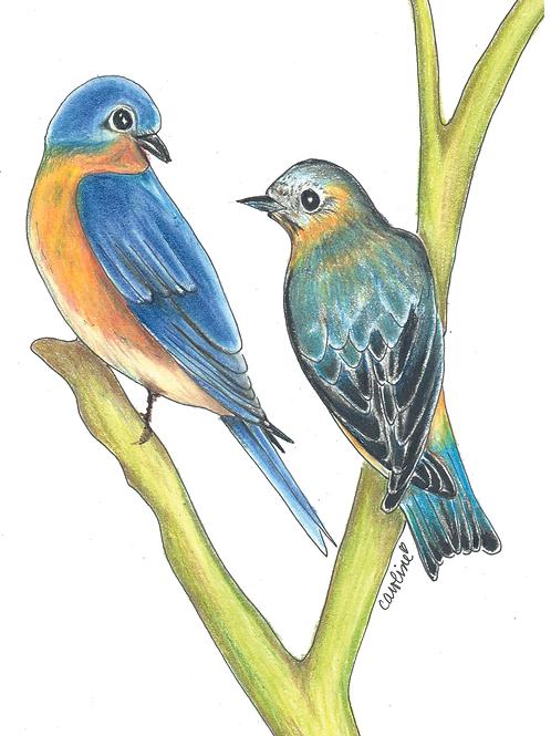 Nana's Bluebirds