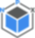 NPX logo