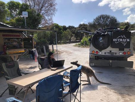 Week 4 - Coffin Bay, SA