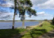hallington-in-the-sunshine.jpg-nggid0232