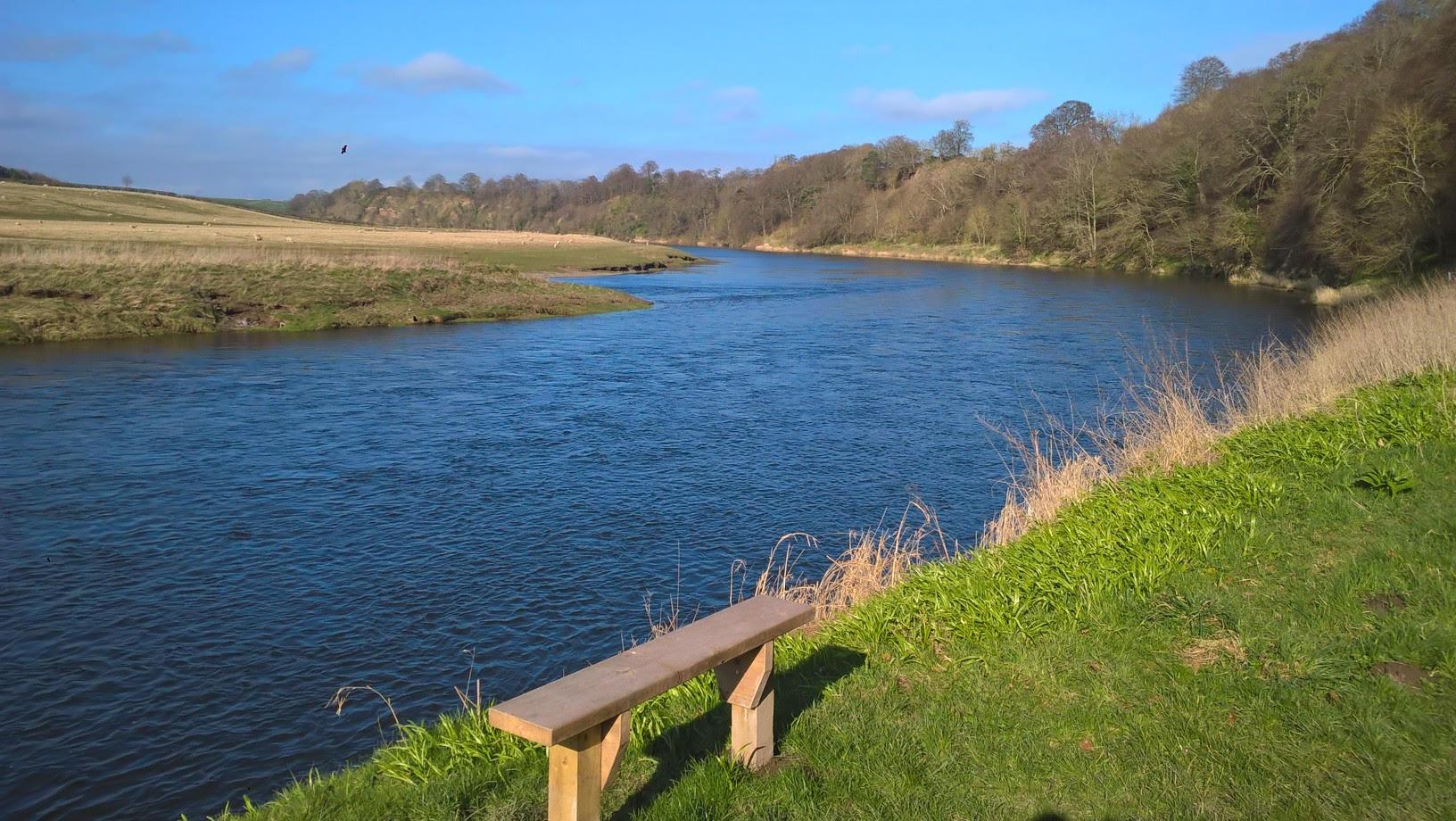 Castle Stream, Pedwell Beat