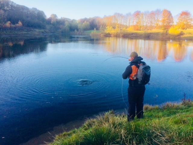 Fish on at Peregrine Lake Farnley