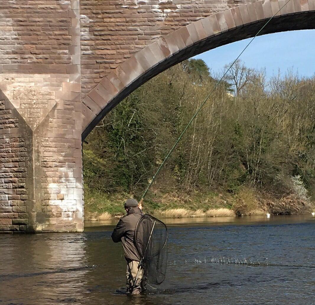 Bridge Pool, Pedwell