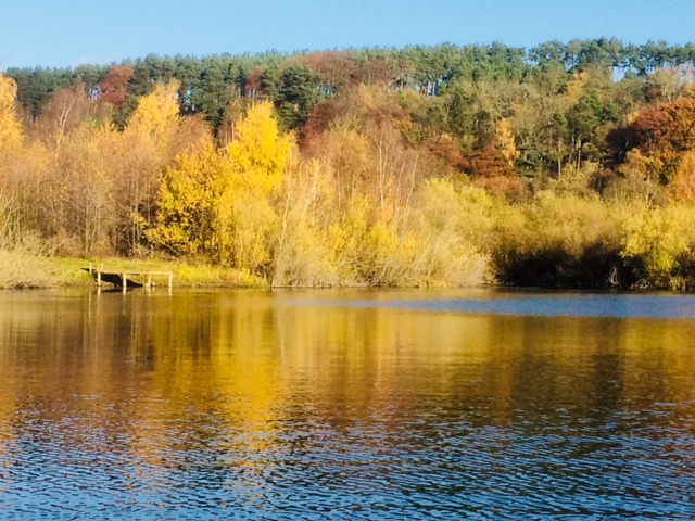 Autumn at Osprey Lake Farnley