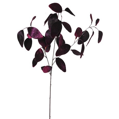 Purple Eucalyptus Spray