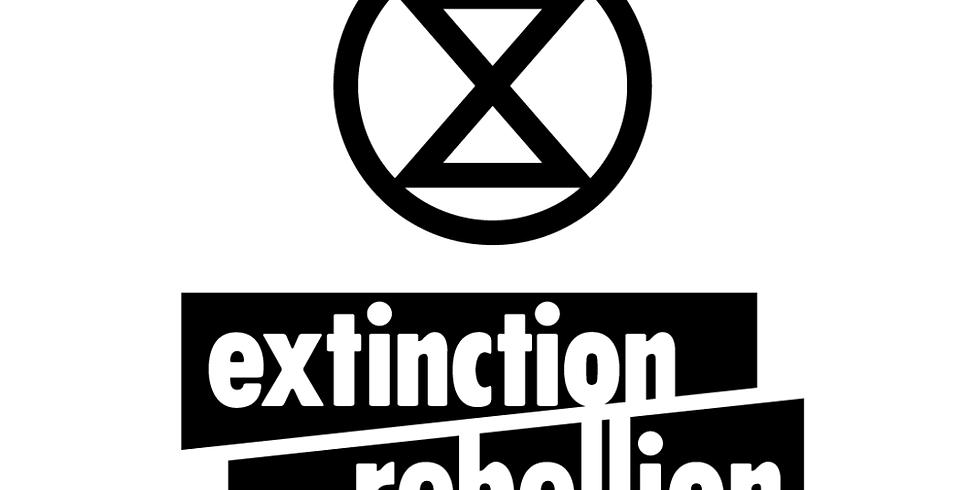 Gillingham Extinction Rebellion Meeting