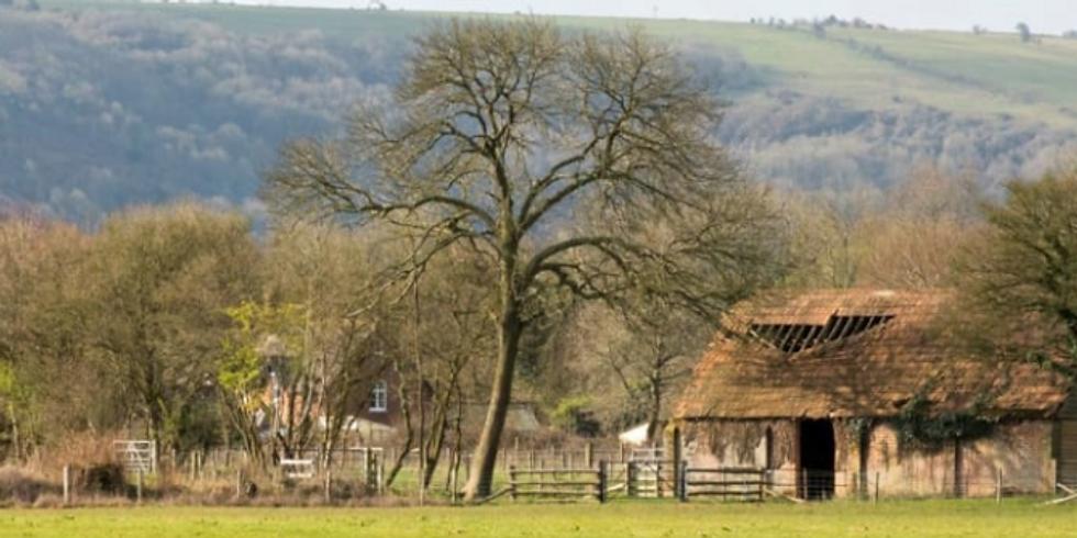 Planet Shaftesbury - Bere Marsh Farm Talk w. Q&A