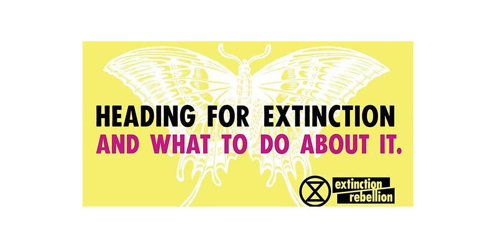 Extinction Rebellion Introductory Talk