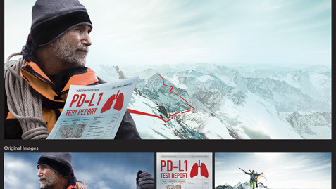 PD-L1 Climber - Digital Panels - Work: Retouching, photo compositing, combo art. Background and hat extension, silhouetting, Adobe Illustrator for the red path and PDL paper, color correction and conversions for print and digital.