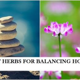 Best Herbs for Balancing Hormones in Women