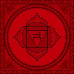 1st Chakra Muladhara - Root