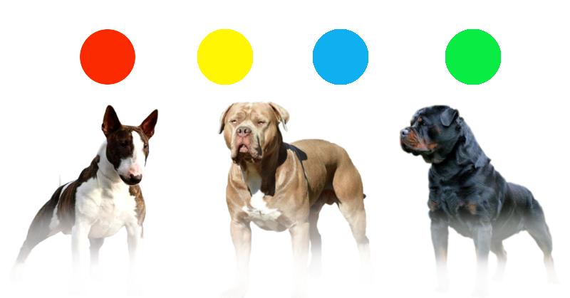 Sistema identificación agresividad en perros